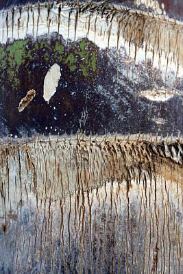 Tree Tears Original by Munir Alawi