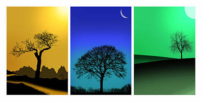 Triptych Photograph - Tree Triptych by Mark Rogan