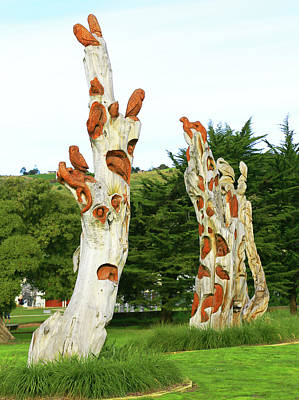 Photograph - Tree Trunk As Sculpture by Nareeta Martin