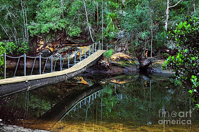 Photograph - Tree Trunk Bridge By Kaye Menner by Kaye Menner