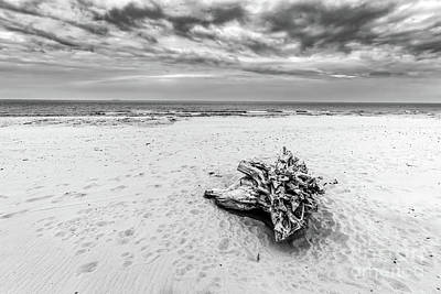 Angle Photograph - Tree Trunk On The Beach. Cloudy, Stormy Day. Black And White by Michal Bednarek