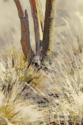 Tree Trunks In Grass - 3 Art Print by Linda Parker
