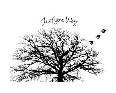 Inspirational Photograph - Tree-trust Your Wings by Inspired Arts