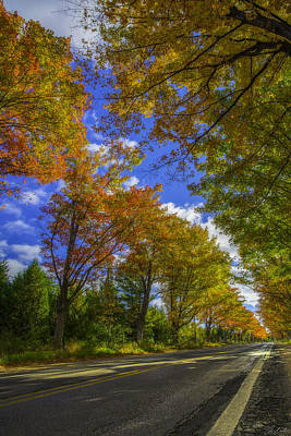 Photograph - Tree Tunnel On M22 by Owen Weber