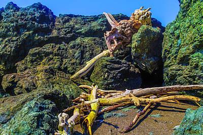 Tree Turns Among The Rocks Art Print