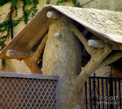 Photograph - Tree With Roof by Randall Weidner