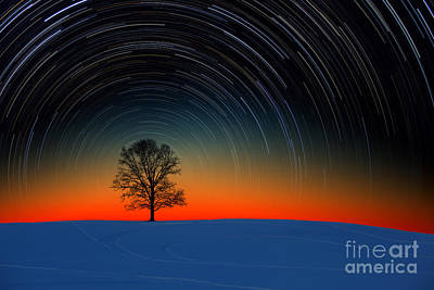 Snowy Night Photograph - Tree With Star Trails by Larry Landolfi