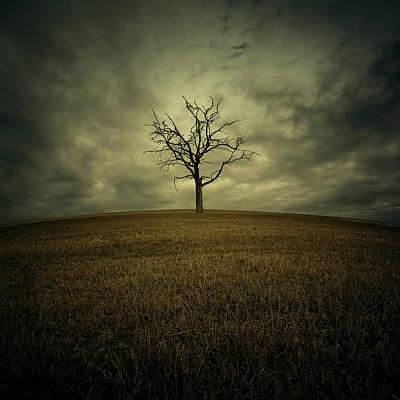 Dark Digital Art - Tree by Zoltan Toth