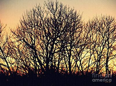 Photograph - Treebone Sunrise 2 by Sarah Loft