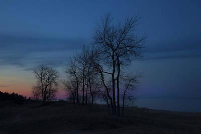 Photograph - Treeline by CA  Johnson