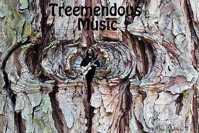 Photograph - Treemendous Music #2 by Ben Upham