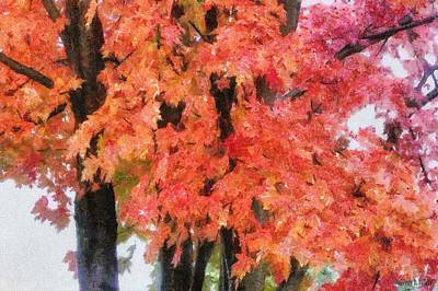 Painting - Trees Aflame by Jeff Kolker