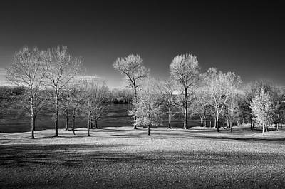 Fort Stark Photograph - Trees Along The River by James Barber