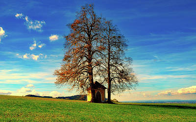 Photograph - Trees And Chapel by Pixabay