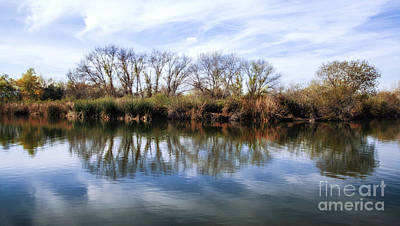 Photograph - Trees And Clouds Reflection On Wildlife Reserve Pond by Jerry Cowart