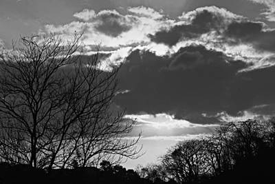 Trees And Clouds-st Lucia Art Print by Chester Williams