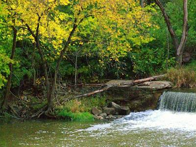 Indiana Landscapes Photograph - Trees And Dam by Michael L Kimble