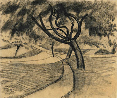 Drawing - Trees And Fields by August Macke