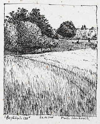 Photograph - Trees And Fields, Rural Landscape Drawing by Martin Stankewitz