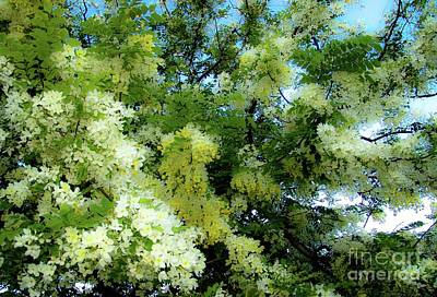 Photograph - Trees And Flowers In Hawaii 492 by D Davila