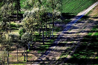 Jerry Sodorff Royalty-Free and Rights-Managed Images - Trees and Path by Jerry Sodorff
