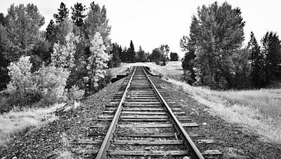 Photograph - Trees And Tracks by Athena Mckinzie