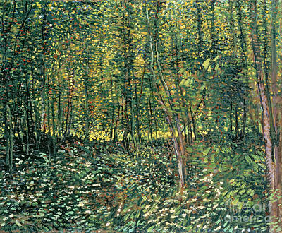Trees And Undergrowth Art Print by Vincent Van Gogh