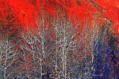 Digital Art - Trees Are Poems That The Earth Writes Upon The Sky -2 by OLena Art Brand