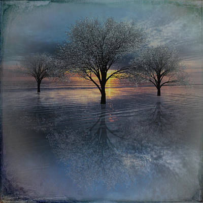Digital Art - Trees At Dawn At The Dunes by Debra and Dave Vanderlaan