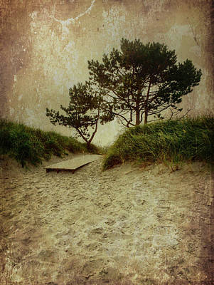 Photograph - Trees By The Sea by Patrice Zinck