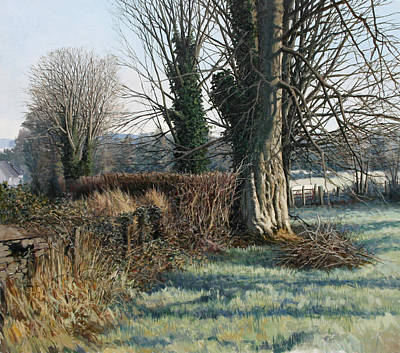 Trees Early Morning In Winter Art Print by Eugene Conway