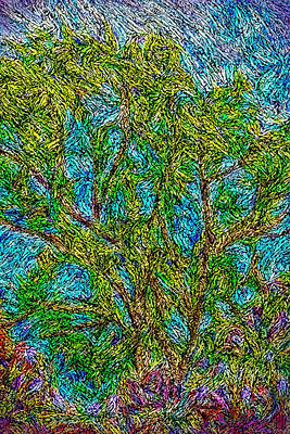 Digital Art - Trees Embraced By Wind by Joel Bruce Wallach