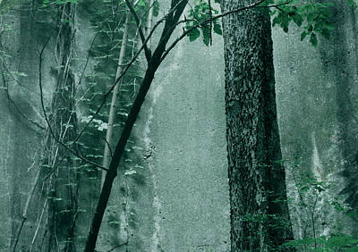 Photograph - Trees Growing In Silo - Green Landscape  Edition by Tony Grider