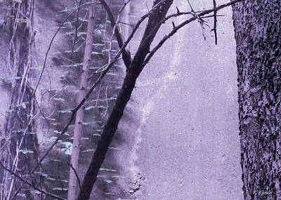 Photograph - Trees Growing In Silo - Purple Landscape  Edition by Tony Grider