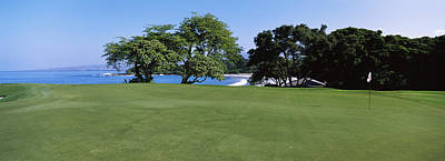 Kea Photograph - Trees In A Golf Course, Manua Kea by Panoramic Images
