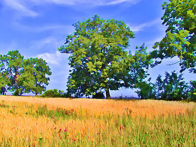 Farm Photograph - Trees In Field by Bill Cannon