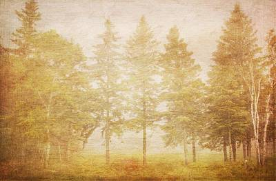 Digital Art - Trees In Fog Painted Effect by Heidi Hermes