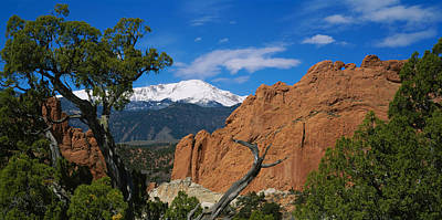 Garden Of The Gods Photograph - Trees In Front Of A Rock Formation by Panoramic Images