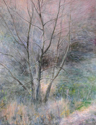Trees In Light Art Print by Harry Robertson