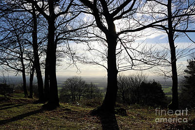 Photograph - Trees In Silhouette In Surrey Hills Uk by Julia Gavin