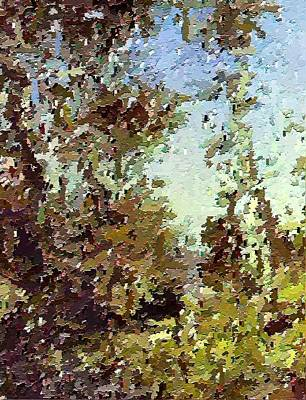 Trees In The Back Yard Art Print by Don Phillips