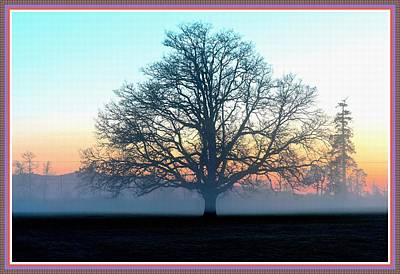 Wine Corks - Trees In The Mist H B With Decorative Ornate Printed Frame. by Gert J Rheeders