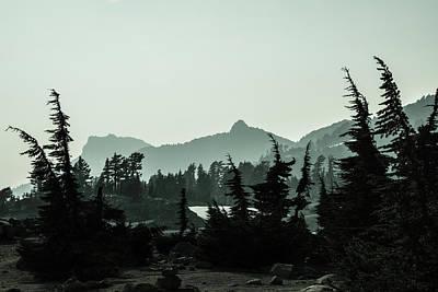 Photograph - Trees Of Lassen 3 by Veronika Countryman