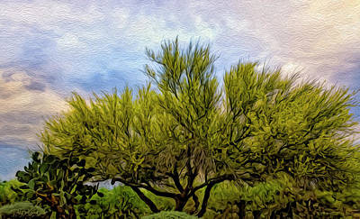 Photograph - Trees Of Splendor Op7 by Mark Myhaver