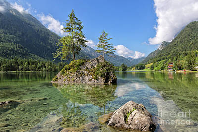 Photograph - Trees On A Rock, Hintersee by Yair Karelic