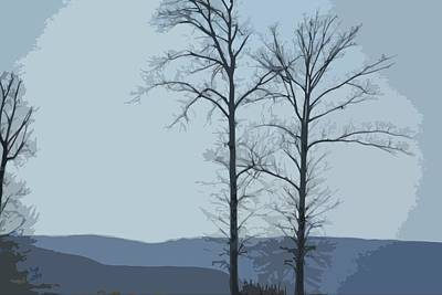 Photograph - Trees On Blue by Donna G Smith