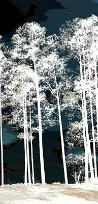 Photograph - Trees On Sam Rayburn Lake Right by Ellen O'Reilly