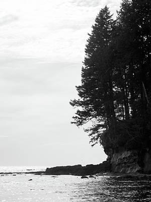 Trees Over The Ocean Art Print