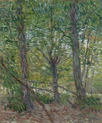 Painting - Trees Paris, July 1887 Vincent Van Gogh 1853  1890 by Artistic Panda