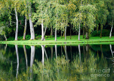 Trees Reflected In Water Art Print